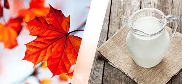 actif-produit-erable-lait-anesse-bio-natessance