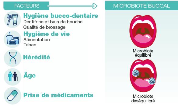 Les facteurs d'un microbiote buccal déséquilibré